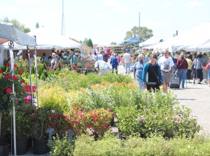 Plant and Produce Aisle at the Shipshewana Flea Market