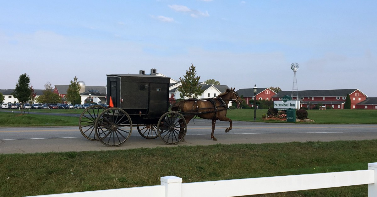 Horse and Buggy at the Farmstead Inn in Shipshewana, IN