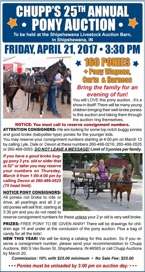 chupp annual pony auction shipshewana indiana