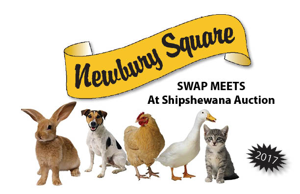 Newbury Square Swap Meet 2017 Dates Shipshewana Indiana