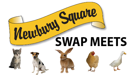 Newbury Square Swap Meets at Shipshewana Trading Place