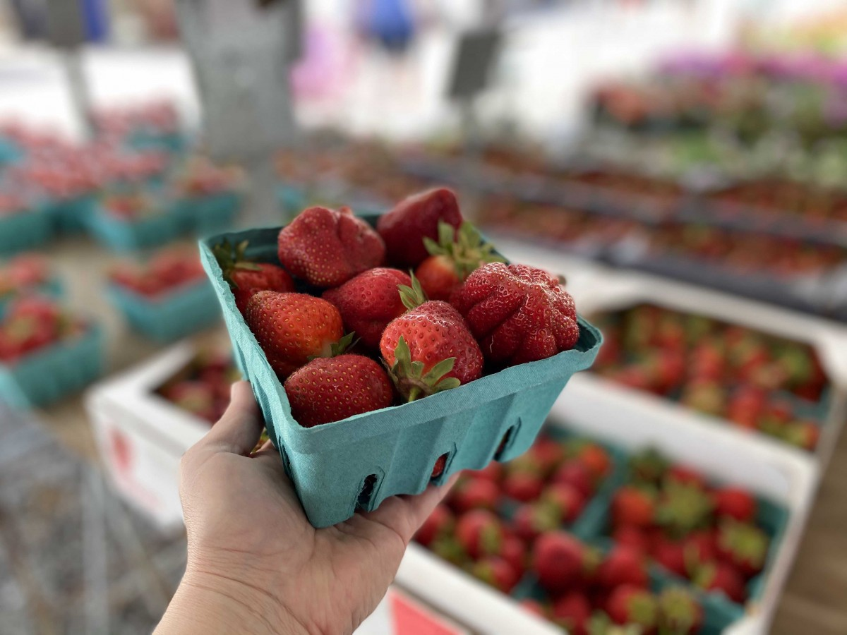 Local Garden Foods Available at Shipshewana Trading Place