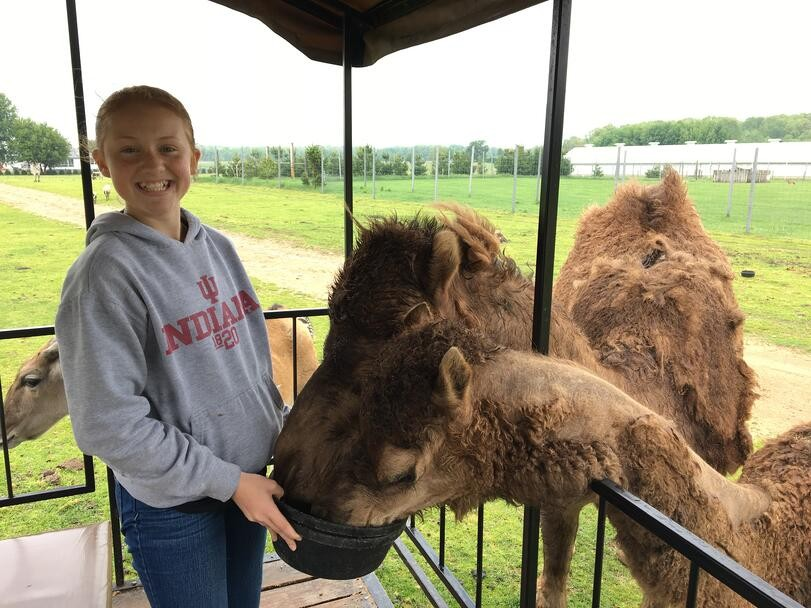 The Whole Family will Love this Immersive Animal Park in Shipshewana